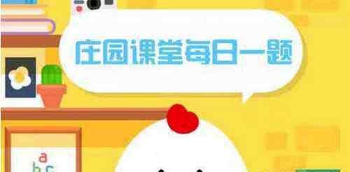 """老鹰的拼音 风筝也叫纸鸢,其中""""鸢""""是指燕子还是老鹰?纸鸢怎么读音"""